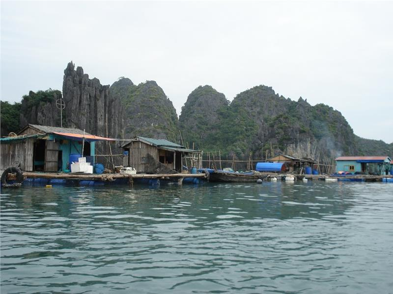 Tranquil scenery at Vung Vieng fishing village 1