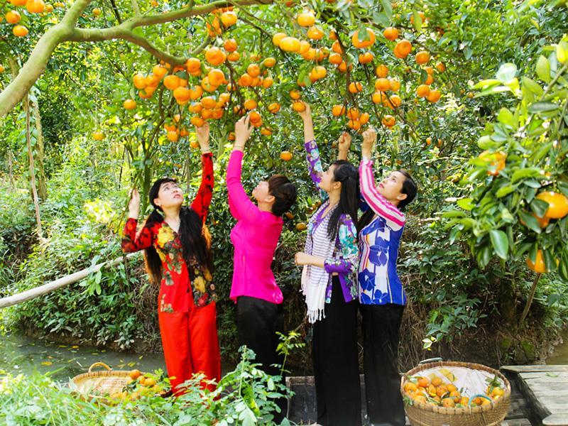 Miệt vườn Mỹ Khánh, Cần Thơ