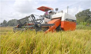 Can Tho invites investment in Thanh Phu agricultural zone