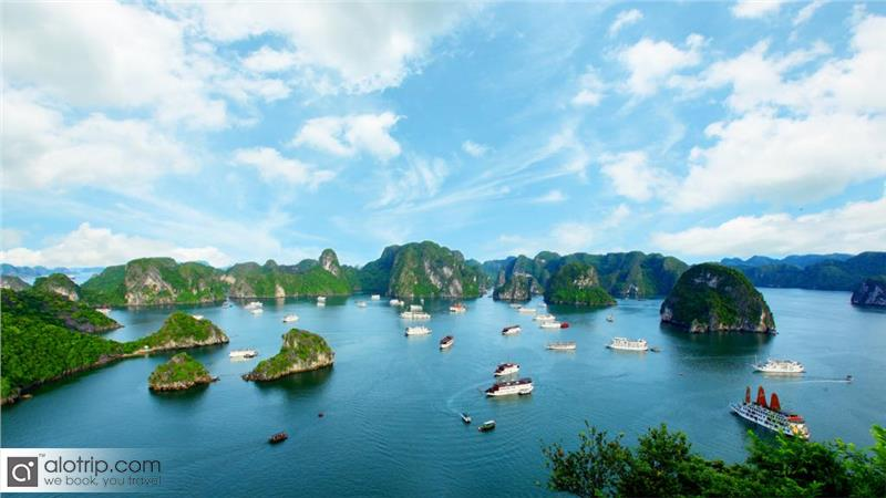 Cat Ba Island Overview