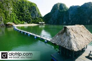 Hai Phong – Cat Ba Island
