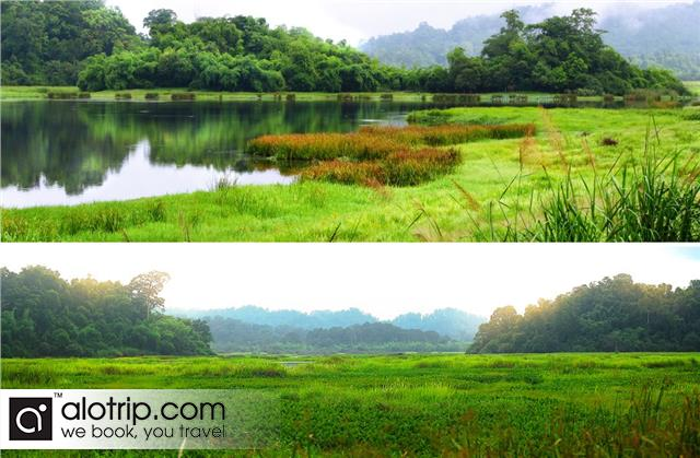 a beautiful view of Cat Tien National Park