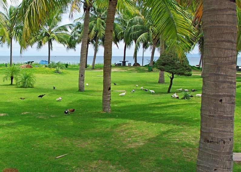 Pham Van Dong Beach at Bien Dong Park
