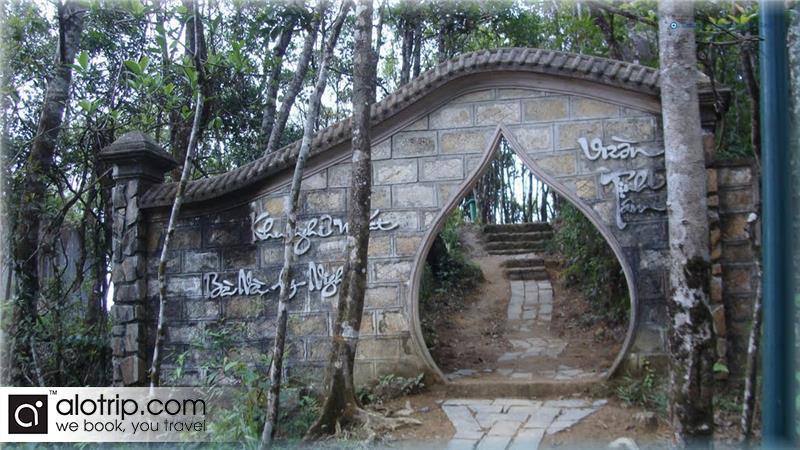 Tinh Tam garden