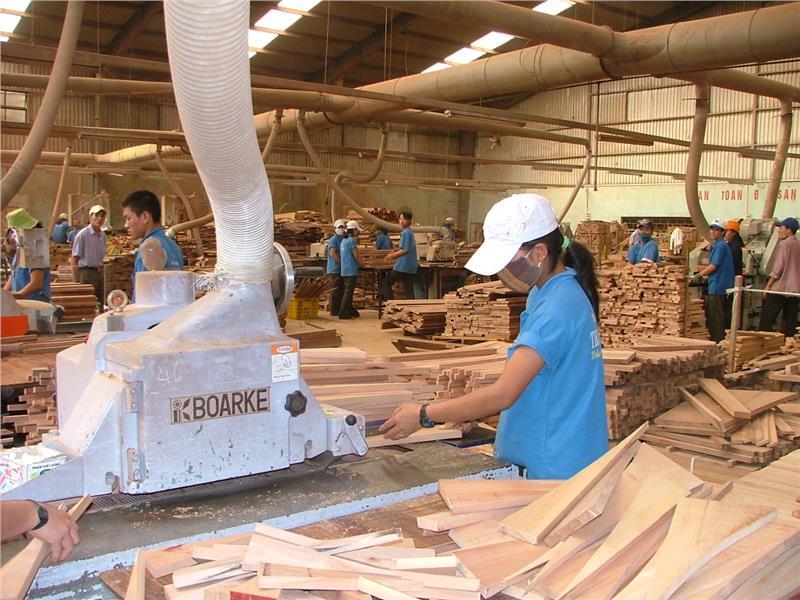 Wood export in Dak Lak