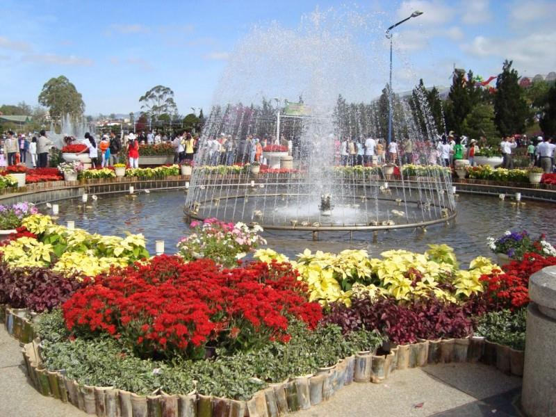 Dalat Flower Festival attracts a great number of tourists