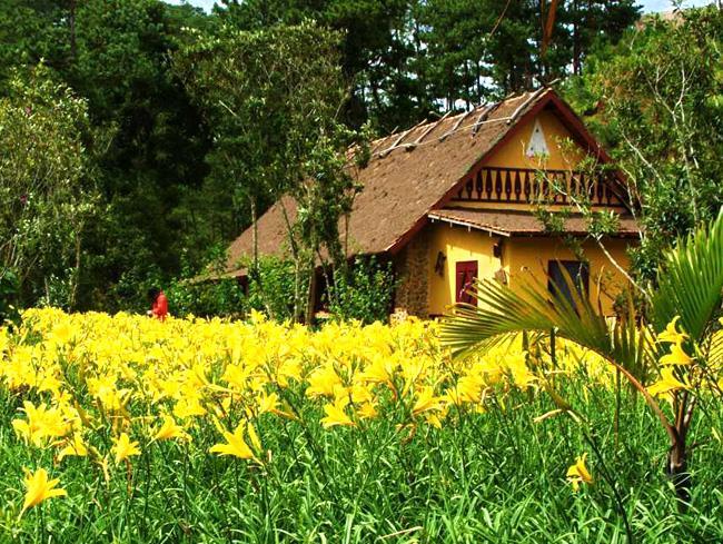 Bạn có đang bỏ lỡ một ngôi làng đẹp như cổ tích tại xứ Đà Lạt mộng mơ?