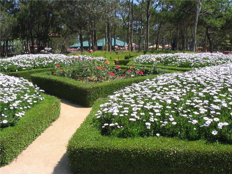 Inside Dalat Flower Park