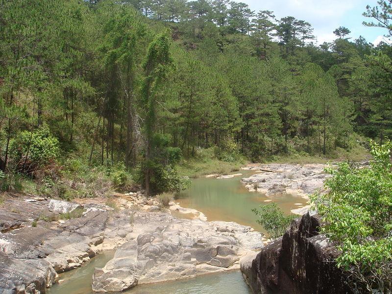 Golden Stream Dalat