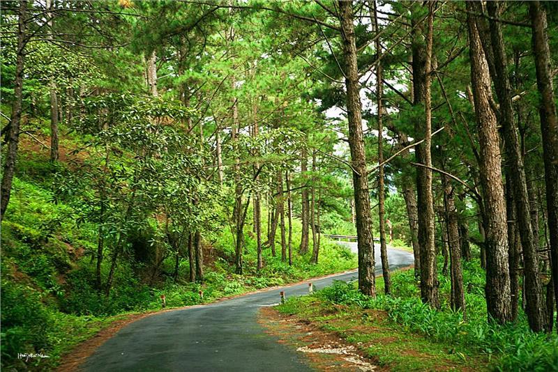 Road to Lang Biang - Dalat