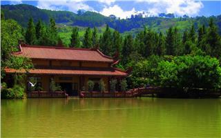 Fantastic spring pilgrimages to Dalat pagodas