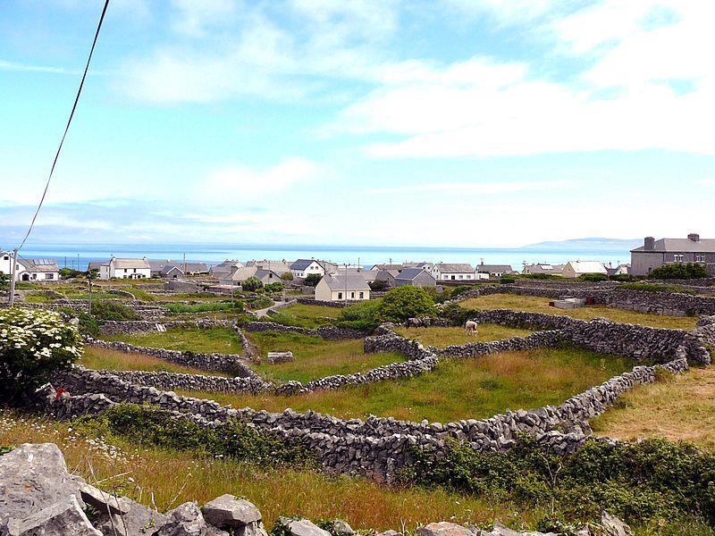 Những bức tường đá ở Đảo Aran, Ireland