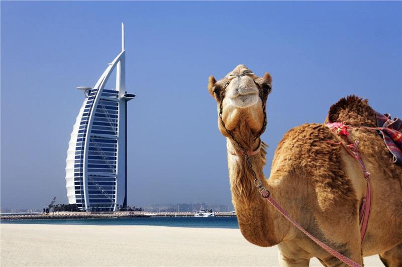 Vé máy bay Hà Nội đi Dubai giá rẻ