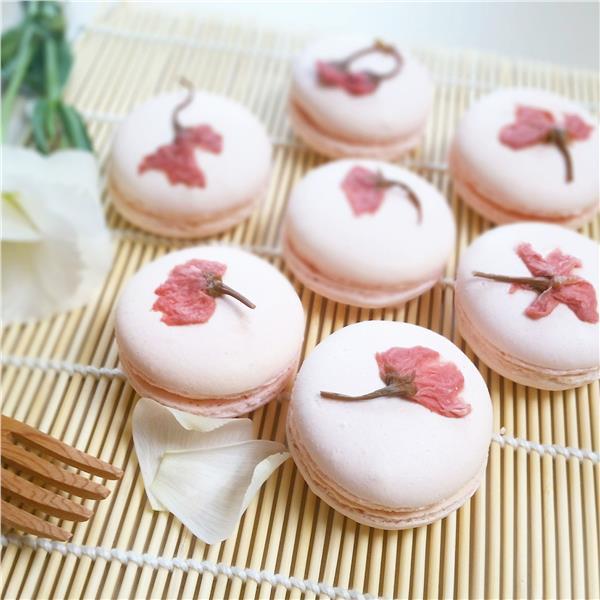 Latte sakura dâu