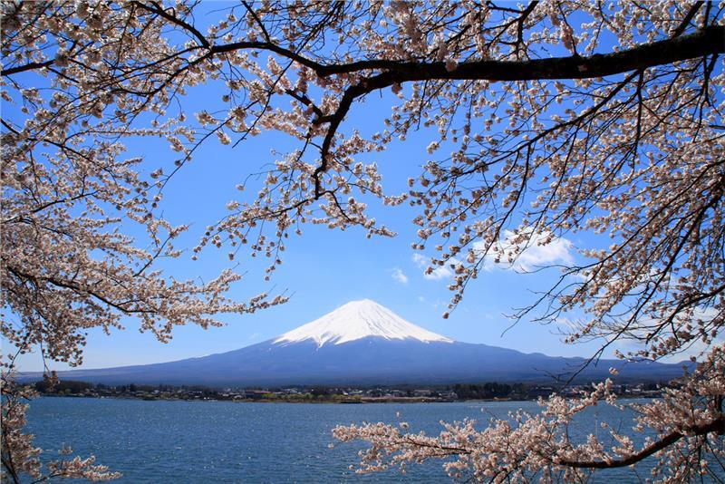 Vé máy bay giá rẻ đi Nhật Bản