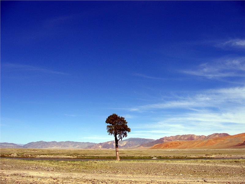 Vé máy bay giá rẻ đi Mông Cổ