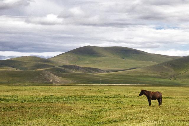 Vé máy bay đi Tây Tạng giá rẻ