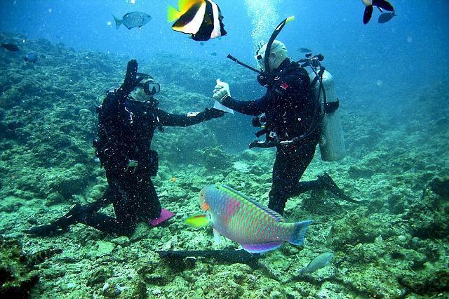 Lặn biển ở Boracay và khám phá đại dương bí ẩn
