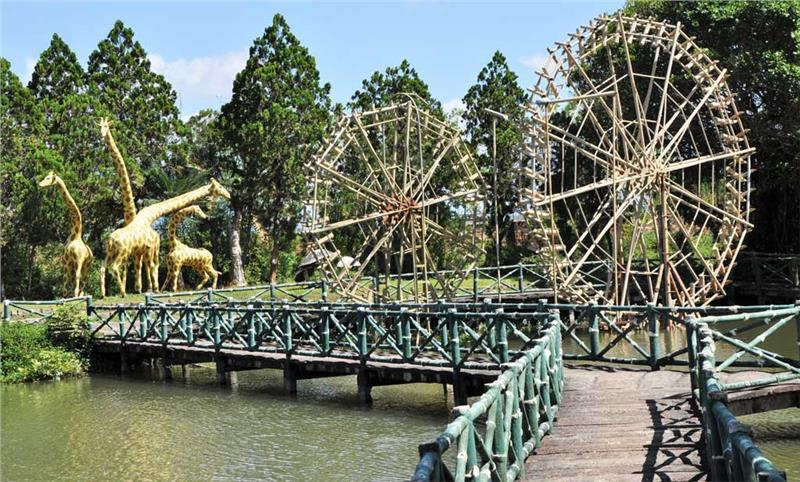 Vẻ đẹp xanh mát của công viên Đồng Xanh