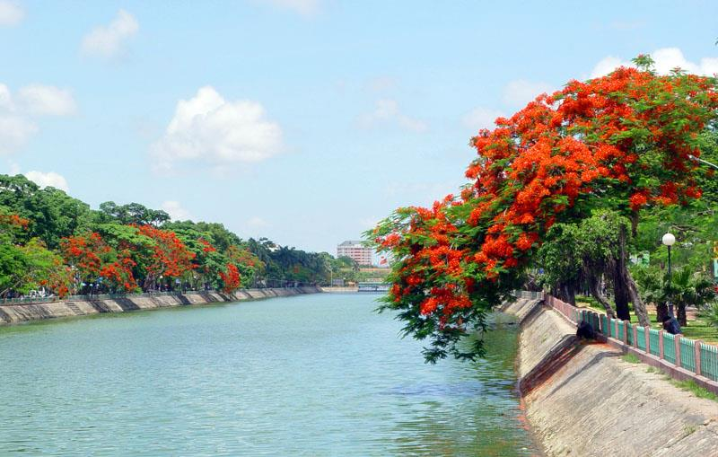 Tìm về vẻ đẹp bình yên của Hải Phòng mùa hoa phượng đỏ