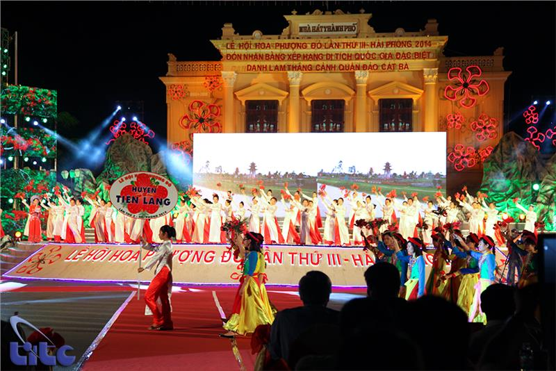 Red Flamboyant Festival 2014