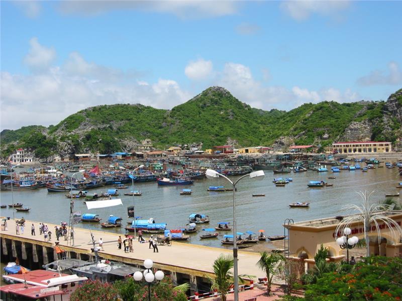 Gia Luan harbour in Cat Ba