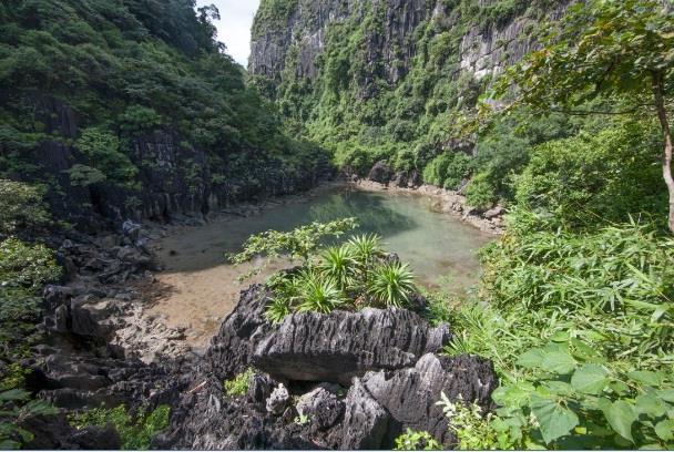 Đỉnh Hồ Động Tiên