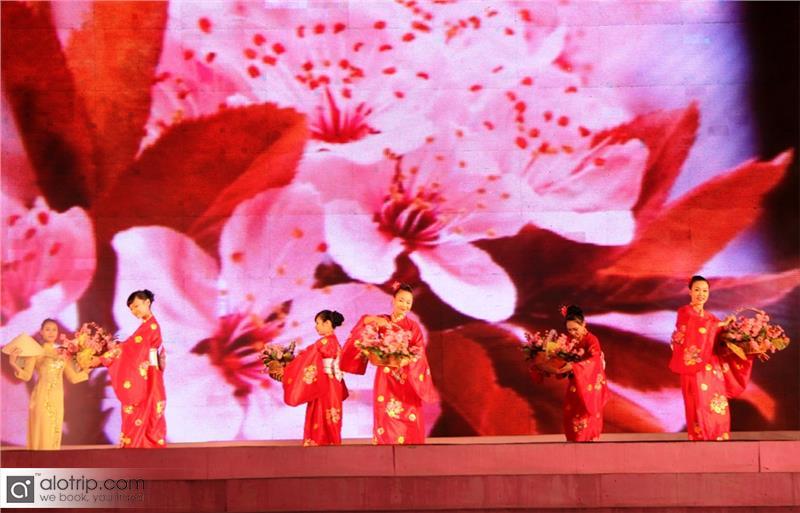 Halong Cherry Blossom Festival