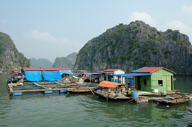 Cua Van fishing village, Halong Bay