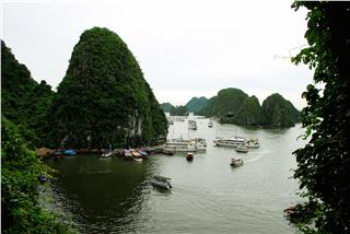 Develop Halong Bay tourism in heritage conservation