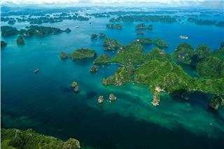 3 affordable ways to enjoy Halong Bay seaplane