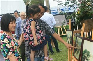 Halong Carnival 2014 exhibits antique Halong Bay photos
