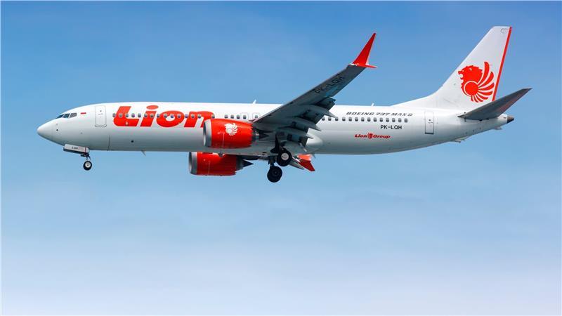Hãng hàng không Lion Airlines