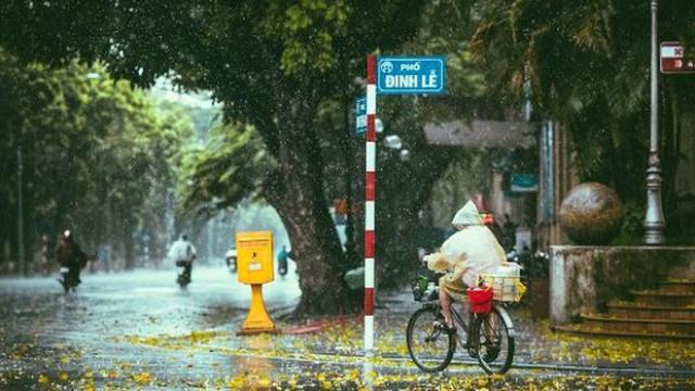 Những cơn mưa bất chợt của mùa thu Hà Nội