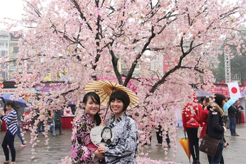 Cherry Blossom Festival 2015 will be held in Thang Long Citadel