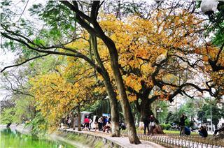 Hanoi autumn - a poem for romantic souls