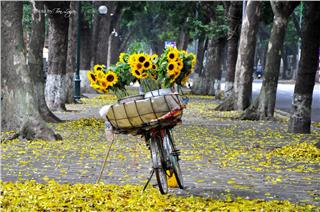 Hanoi – Top 10 most attractive destinations