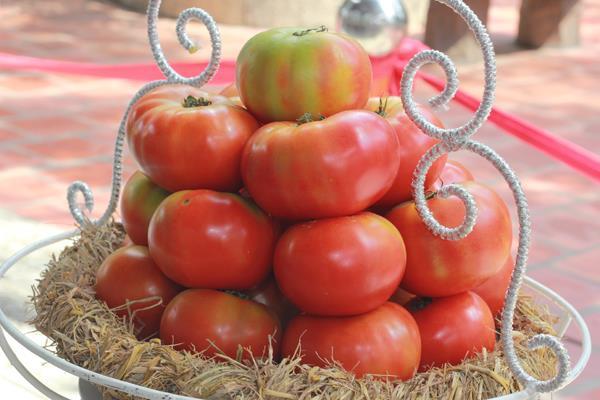 Fresh tomatoes from Dalat