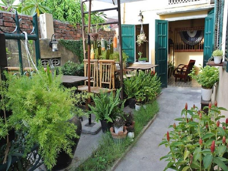 May Concept in Hoi An