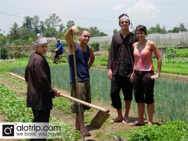 Practise to plant vegetable in Tra Que village