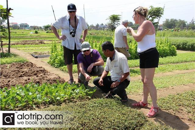 Tra Que vegetable village Tour