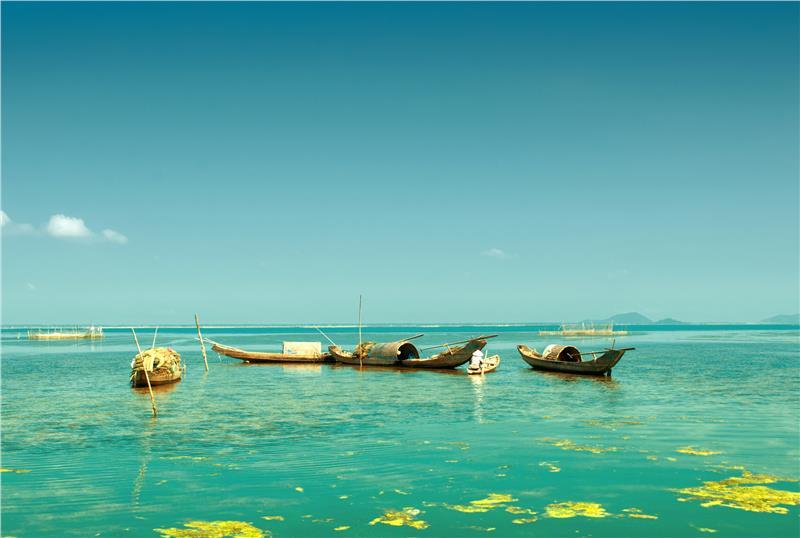 Tam Giang lagoon - Hue