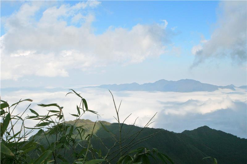 Fansipan Mountain in the thick fog