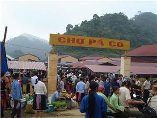 Pa Co Market