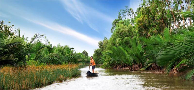 River in Ca Mau Vietnam