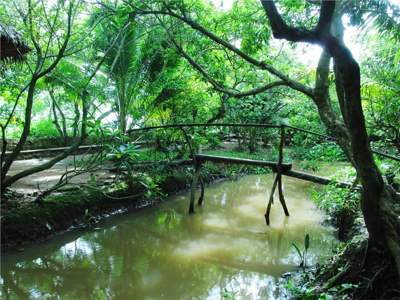 Typical Monkey Bridge in Thoi Son Island