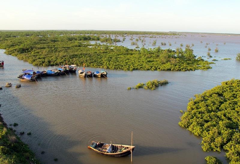 A scenery in biospehere reserve in Nam Dinh
