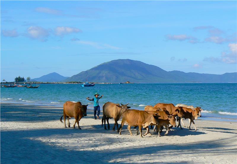Doc Let Beach, Nha Trang