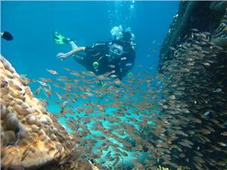 Where to dive in Nha Trang