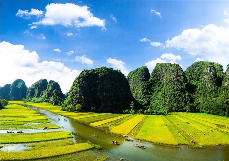 Chiêm ngưỡng Ninh Bình mùa lúa chín